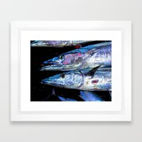 Catch of the Day: Wahoo Framed Art Print
