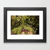 Nature At Its Best Framed Art Print