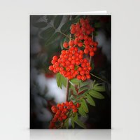 Rote Beeren Stationery Cards