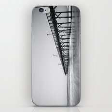 Pier I iPhone & iPod Skin