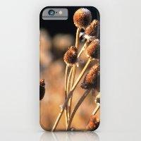 Brown Eyes iPhone 6 Slim Case