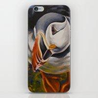 Atlantic Puffin iPhone & iPod Skin
