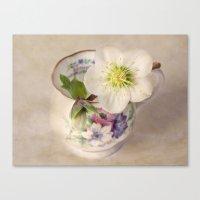 January Flower Canvas Print
