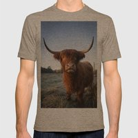 Moo Mens Fitted Tee Tri-Coffee SMALL