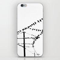 Porto I iPhone & iPod Skin