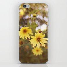 Five Flowers iPhone & iPod Skin