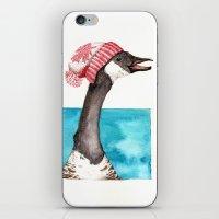 Canada Goose in a Canada Toque iPhone & iPod Skin
