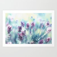 Lavender Summerdreams Art Print