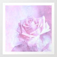 subtle pink rose Art Print