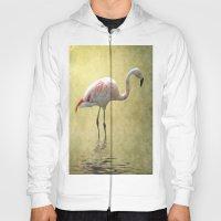 Flamingo Hoody