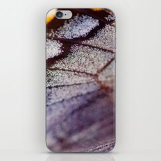 Butterfly Wing Macro iPhone & iPod Skin