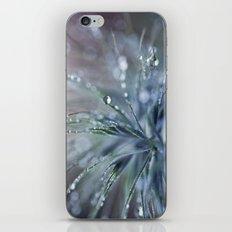 dewy pinwheel iPhone & iPod Skin