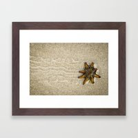 Starfish on the Move Framed Art Print