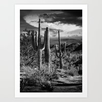 Black And White Photogra… Art Print