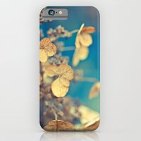 Daylight Dreams iPhone 6 Slim Case