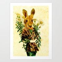 Australian Icon: The Kangaroo Art Print
