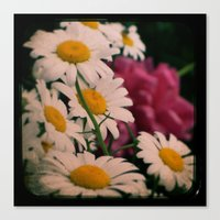 Peony and Daisies ttv photo Canvas Print