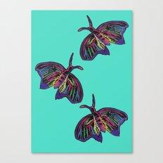 Butterflies gradient  Canvas Print
