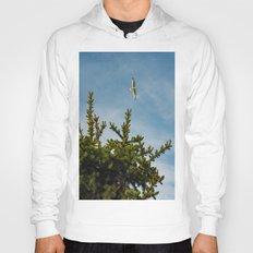 Seagull Pine tree tops Hoody
