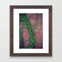Brick Wall Ivy Framed Art Print