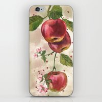 Apple painting, fruit paintings, watercolor apples, watercolour fruit print, garden lover gift,  iPhone & iPod Skin