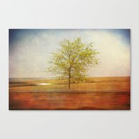 Lonely tree.I Canvas Print