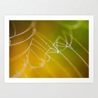 The Spiders Golden Web -… Art Print