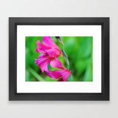 Ruffled Blooms Framed Art Print