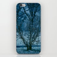 Blue Winter  iPhone & iPod Skin