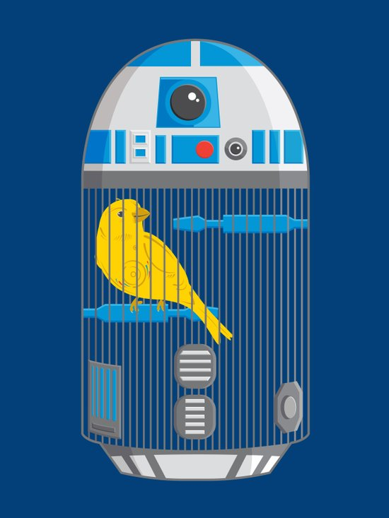 R2 Birdcage Art Print