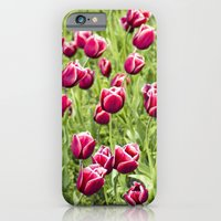 Tulips will remember  iPhone 6 Slim Case