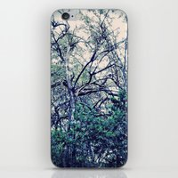 Faerie Tales iPhone & iPod Skin