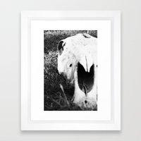 The Skull of a Cow Framed Art Print