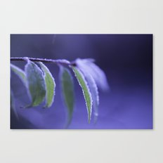 blue frost Canvas Print