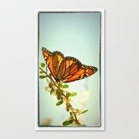 Monarch Flower Canvas Print