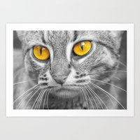 RUSTY SPOTTED CAT Art Print