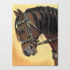 Horse - Portrait Canvas Print