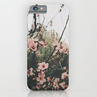 iPhone & iPod Case featuring Blossoms  by Taylor Whitehurst