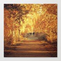 Golden walk Canvas Print