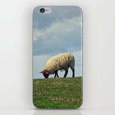 Sheep on the Hill iPhone & iPod Skin