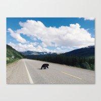 Black Bear Crossing Canvas Print