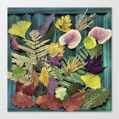 autumn abstract- fallen beauties Canvas Print