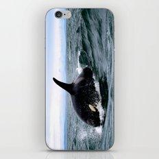 Willy iPhone & iPod Skin