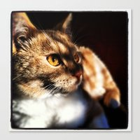 Canvas Print featuring Cat by SABOTAGE