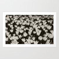 Field of white butterflies  Art Print