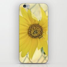nothing lasts forever iPhone & iPod Skin