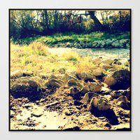 Nature 6 Canvas Print