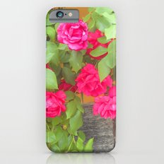 Tudor Rose Slim Case iPhone 6s