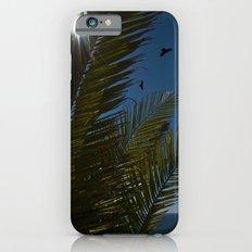 Sunny palms iPhone 6 Slim Case