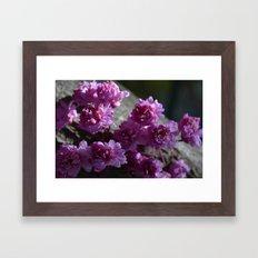 tree flowers Framed Art Print